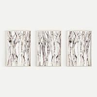 Набор постеров Minimalist Birch Tree формат А3