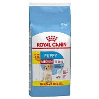 Сухой корм Роял Канин (Royal Canin) Medium Puppy для щенков собак средних пород, 15 кг+3 кг
