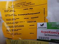 Семена гороха Сомервуд/ Somerwood (Syngenta) 100000 семян / 100 тыс сем — среднепоздний (65 дней), овощной
