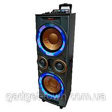 Колонка з акумулятором Rainberg RB-666/180W/ радіо мікрофон/ BT/ SD+USB+FM/ LED