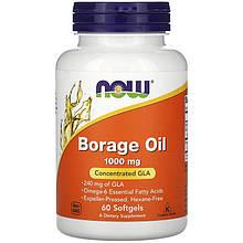 "Масло огірочника NOW Foods ""Borage Oil"" 1000 мг, найвища зміст ГЛА (60 гельових капсул)"