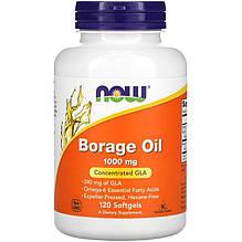 "Масло огірочника NOW Foods ""Borage Oil"" 1000 мг, найвища зміст ГЛА (120 гельових капсул)"