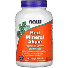 """Красные минеральные водоросли NOW Foods """"Red Mineral Algae"""" с витамином D2 (180 капсул)"""