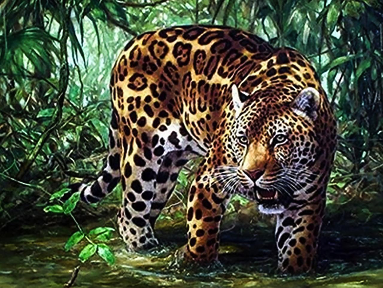 """Алмазная вышивка. Набор алмазной вышивки """"Леопард в джунглях"""". Размер 40*30 см."""