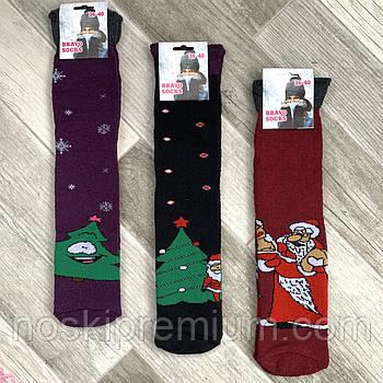 Носки женские махровые х/б без резинки с отворотом Новый год Bravo Socks, Турция, ассорти, 02482