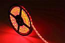 Світлодіодна стрічка червоного кольору LED 3528 60 Red 12V без силікону sale, фото 2
