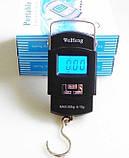 Весы Электронные Подвесные ACS A08 до 50 кг Кантер, фото 6