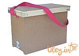 Ящик рамочный для 6-ти рамок Рута, фото 2