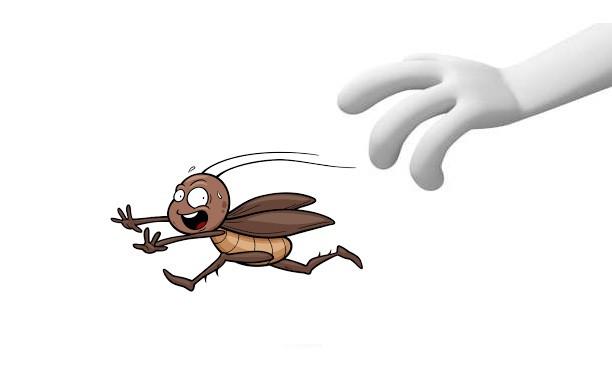 Чистка від комах і рідин