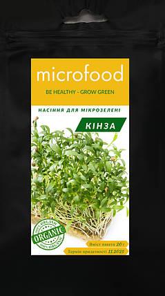 Семена микрозелени Кинза 20г MICROFOOD, фото 2