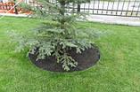 Садовая бордюрная лента   Альта-Профиль расширенная 0,5х150х9000 мм коричневый, фото 5