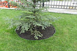 Лента бордюрная для огорода зеленая 150х0,5х9000 мм, фото 6