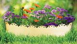 Лента бордюрная для огорода  0,65х150х9000 мм зеленая, фото 3