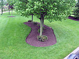 Лента бордюрная для огорода  0,65х150х9000 мм зеленая, фото 7