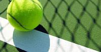 Шесть заповедей успешного теннисиста