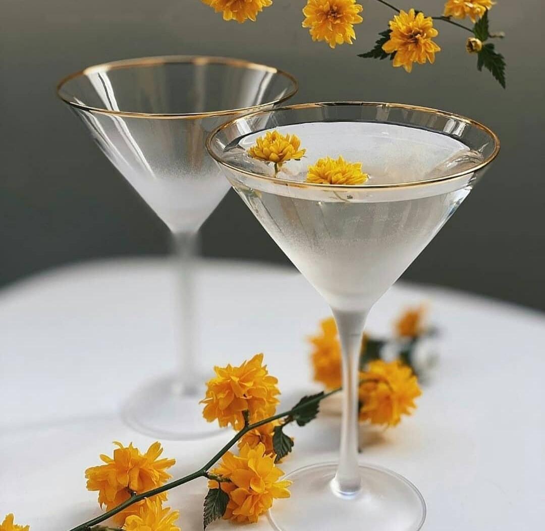 Набор бокалов DS Gold Rome для мартини 250 мл 4 шт Белый полупрозрачный Матовый