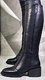 Диор! Сапоги замшевые зимние женские, трубы, на невысоком устойчивом каблуке, фото 4