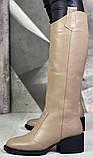 Диор! Сапоги замшевые зимние женские, трубы, на невысоком устойчивом каблуке, фото 10
