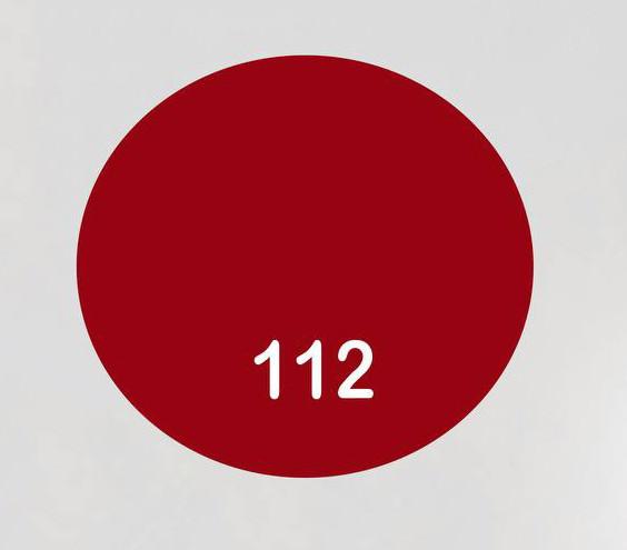 Краска для кожи  BSK Paint красный 25 мл