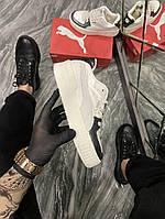 Кроссовки женские Puma Cali Sport Animal Beige (Бежевый). Стильные женские кроссовки., фото 1