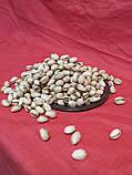 Фісташки солені США 4 кг, фото 5