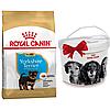 +КОНТЕЙНЕР Корм Роял Канін Йоркширський Тер'єр Юніор Royal Canin Yorkshire Junior для цуценят 1,5 кг