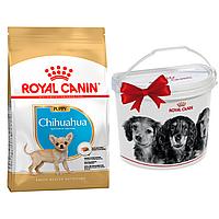 +КОНТЕЙНЕР Корм Роял Канін Чихуахуа Паппі Royal Canin Chihuahua Puppy породний для цуценят 1,5 кг