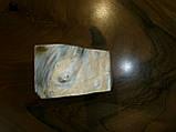 Брусок, кап клёна, фото 2