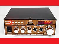 Усилитель звука BM AUDIO BM-606BT FM USB Блютуз + Караоке