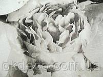 Обои виниловые на флизелиновой основе A.S. Creation (Mixed) 37658-3, фото 2
