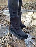 Зимние сапоги дутики JOG DOG оригинал натуральная шерсть 34, фото 8