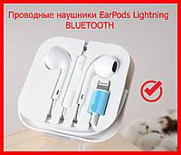 Проводные наушники EarPods Lightning Apple iPhone 5/6/7/7+/8/8+X/XS/XR/11/12/iPad/ipod лайтинг ганитура айфон