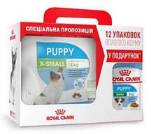 Royal Canin (Роял Канин) X-Small Puppy - Сухой корм для миниатюрных щенков возрастом от 2 до 12 месяцев 3 кг + 12 паучей