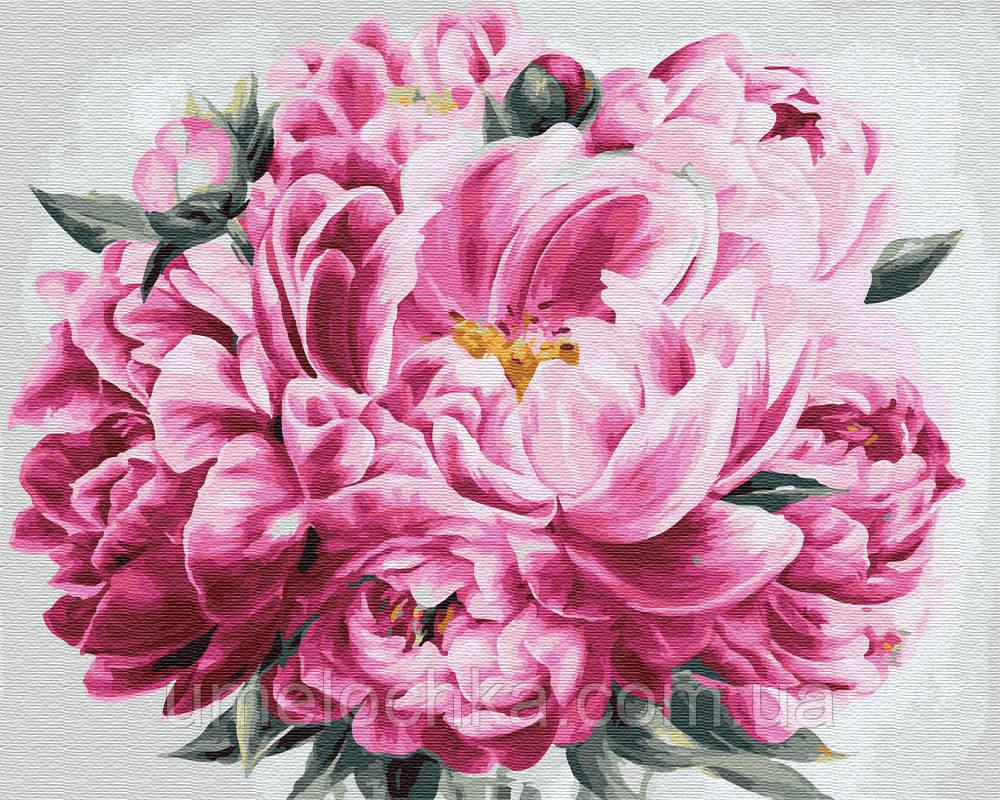 Рисование по номерам Розовый пион (BRM24600) 40 х 50 см Brushme