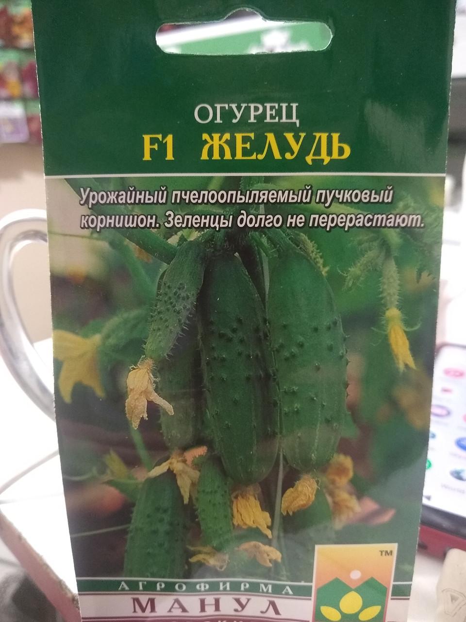Семена огурца раннего гибрида корнишона замедленного роста Желудь F1 10 семян Манул