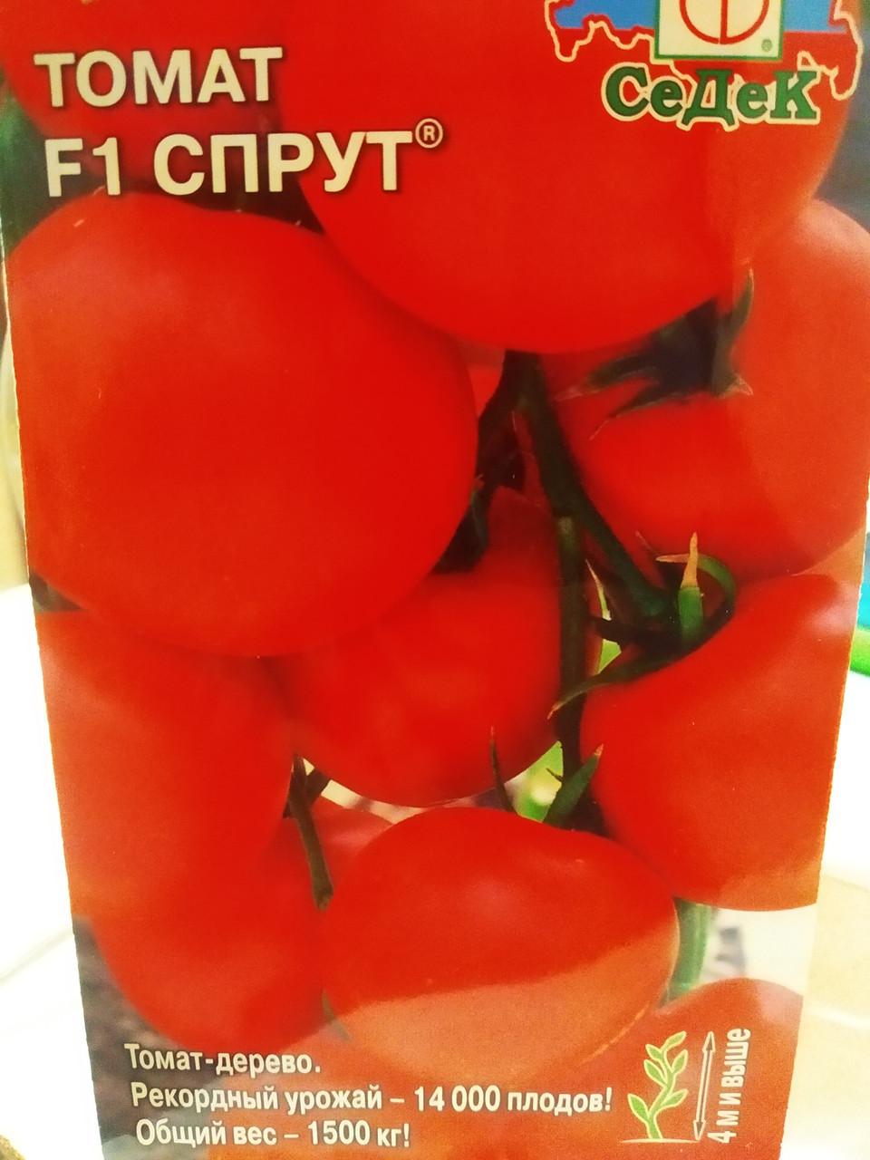 Семена томата Спрут F1 гибрид томат дерево 4 метра круглые красные плоды 0,03 грамм семян Седек