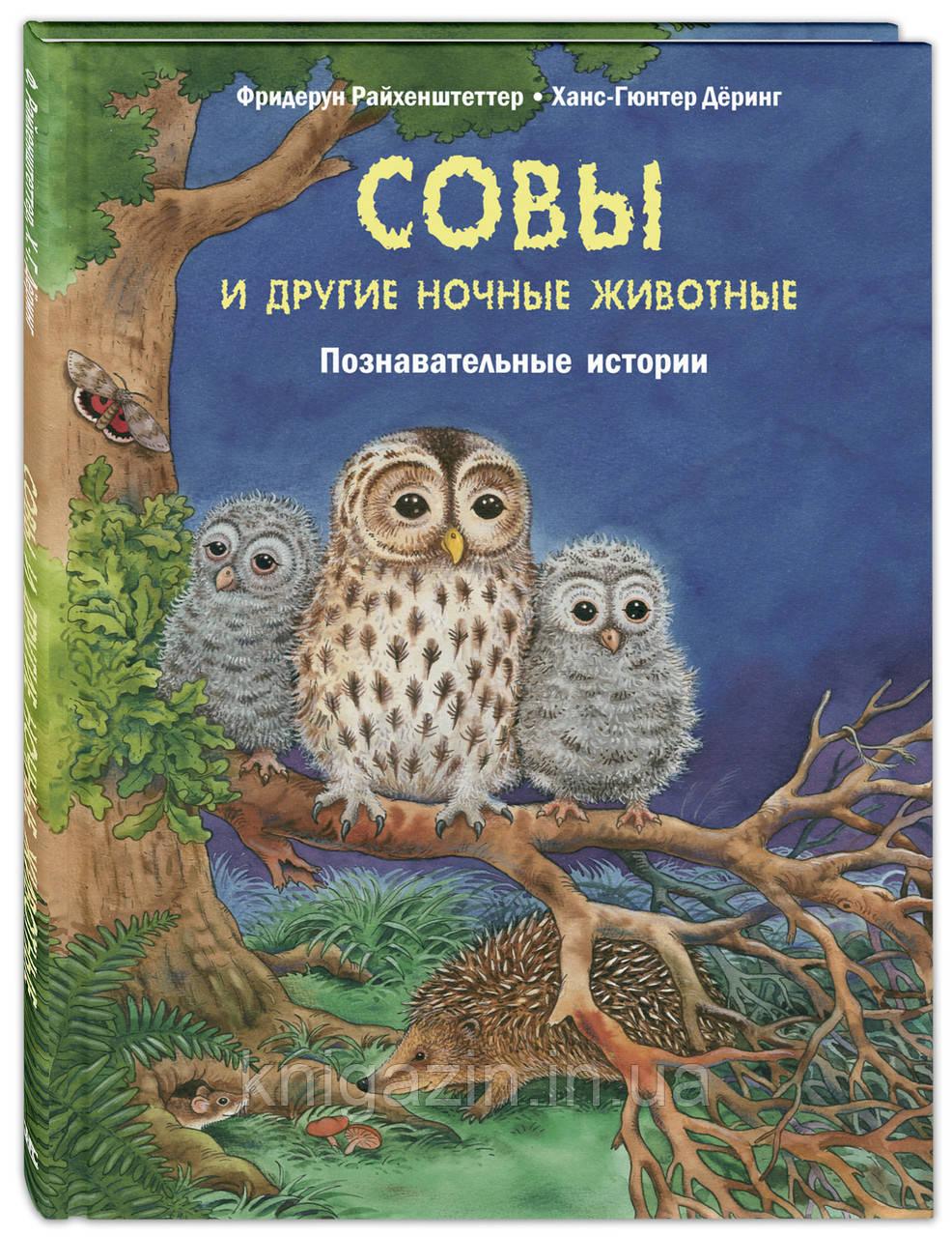 Книга Совы и другие ночные животные. Познавательные истории