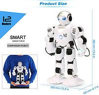 Робот р/у K1, фото 1