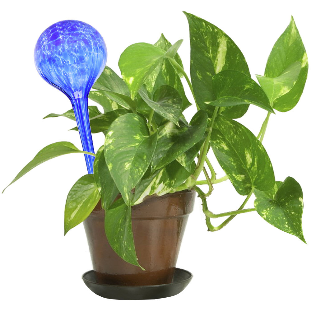 Шар для полива растений Аква Глоб, Aqua Globes, шар для полива растений