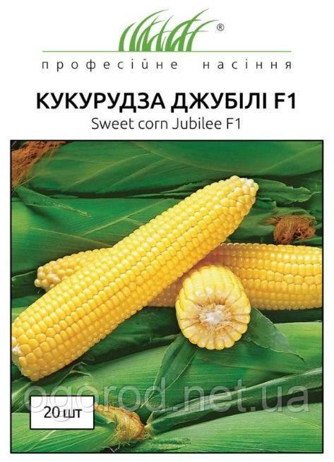Джубили F1 20 шт семена кукурузы Syngenta Голландия