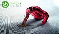 В бытовой технике обнаружен грибок, который смертельно опасен для здоровья