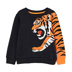 Свитшот для мальчика утепленный Tiger Little Maven (2 года)