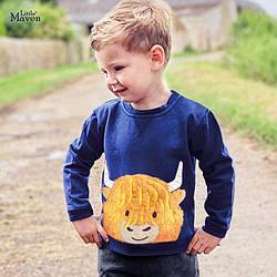 Свитшот для мальчика утепленный Buffalo Little Maven (2 года)