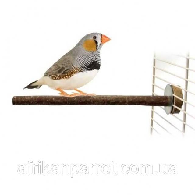 Жердочки для птиц