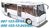 Запчасти на автобус Богдан А-091,А-092,Исузу,Эталон,Тата., фото 2