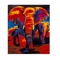 """Картина раскраска по номерам """"Слоны"""", 40х50см. №30378"""