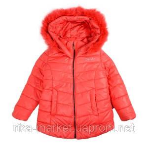 Куртка Goldy 26н-ЗД-15