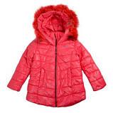 Куртка Goldy 26н-ЗД-15, фото 2