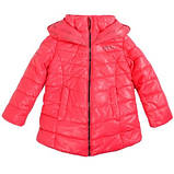 Куртка Goldy 26н-ЗД-15, фото 3