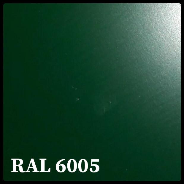Гладкий лист зеленого цвета